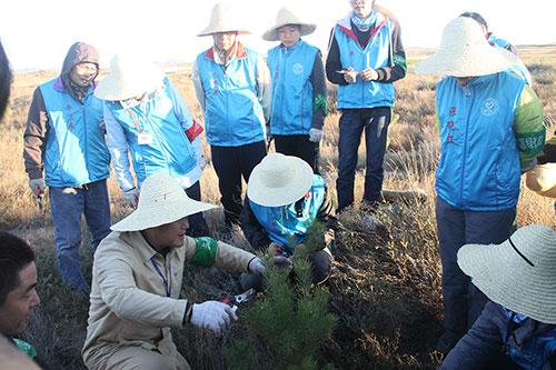 6-理纯教授为志愿者讲解如何为树苗剪枝