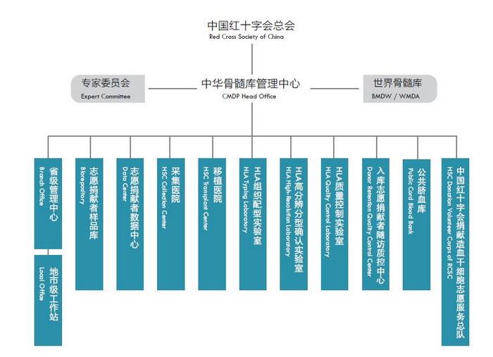 CMDP工作体系